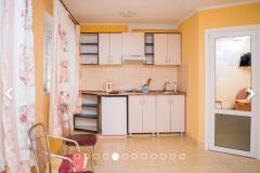 Эллинг Орджоникидзе Хелниг 2-комнатный 1 этаж (8)